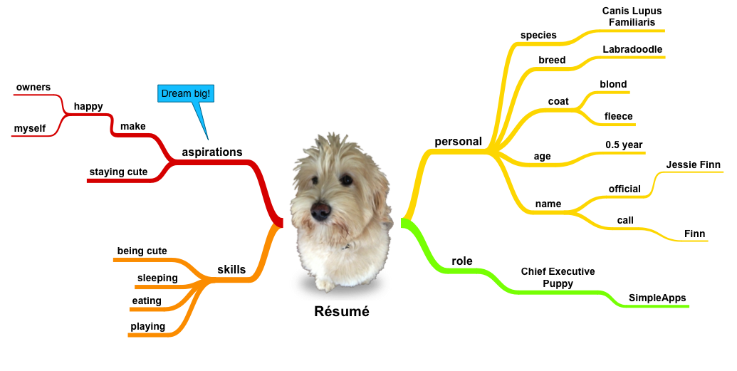 Example 1 of what kind of Mind Maps you can make with SimpleMind Pro